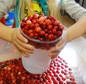 Cranberry Sensory Bin activity! Fun play activity for building fine motor skills and learning about measuring. Perfect for toddlers, preschool, and kindergarten! #cranberrysensorybin #sensoryplay #funearlylearning