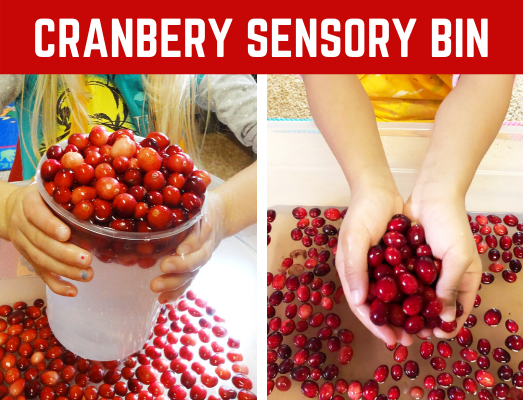Christmas Sensory Bin for preschool, prek, kindergarten, and toddlers! Fun cranberry sensory that is quick and easy to make! #christmassensorybin #sensorybin #sensoryplay #funearlylearning