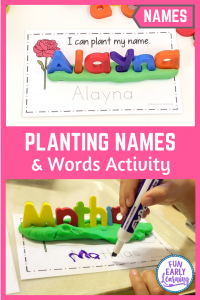 Editable Planting Names and Sight Words Activities. 2 fun activities for preschoolers and kindergarteners. Perfect for children learning to write their name, sight words, and other words.